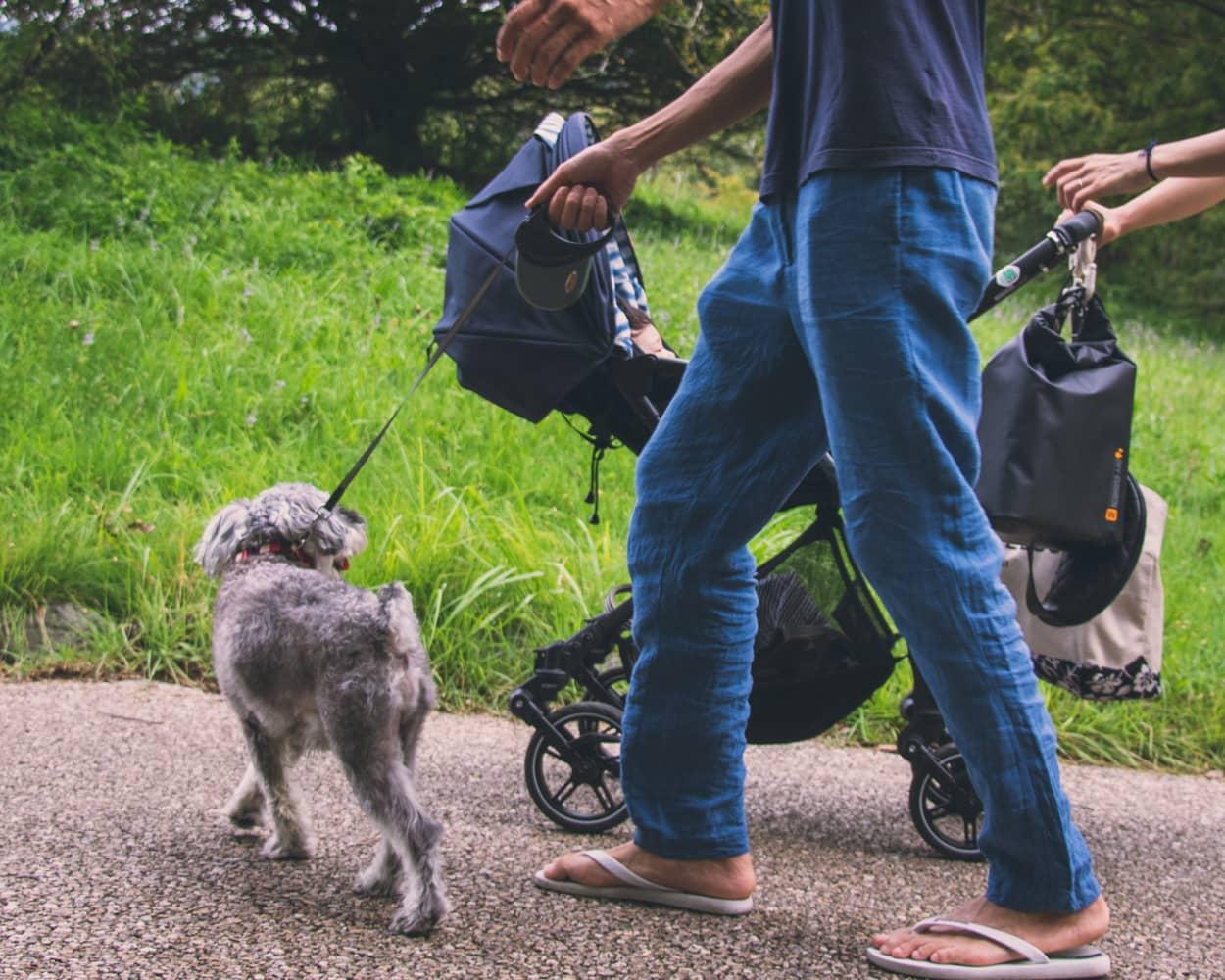 Dog-1家族と過ごす時間。国立公園をお散歩。